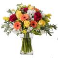 Energía Floral: Rosas y Gerberas