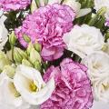 Bahamas: Lisianthus and Pink Carnations