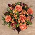 Pumpkin: Roses and Alstroemerias