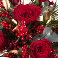Radiance: Roses and Holly