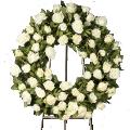 Großer Weißer Trauerkranz