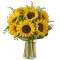 Warm Sunshine: Sunflowers