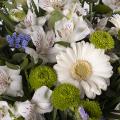 Wyrazy Współczucia: Białe Gerbery i Alstremeria