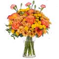 Puesta de Sol: Rosas y Calas