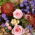 Extravagance rose