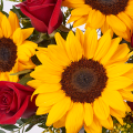 Tokyo: Sunflowers and Red Roses
