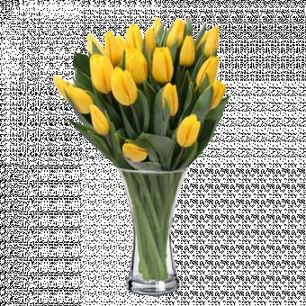 Soleil de Printemps : Tulipes Jaunes