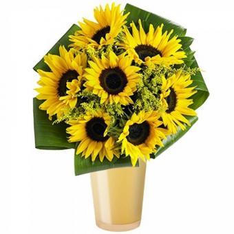 Warm Sunshine: Sunflowers