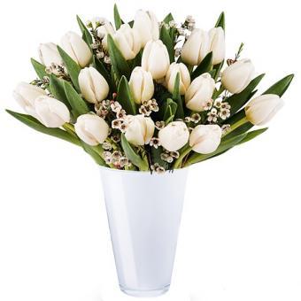 Wiosenny Blask: Białe Tulipany