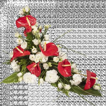 Arrangement rouge Anthurium