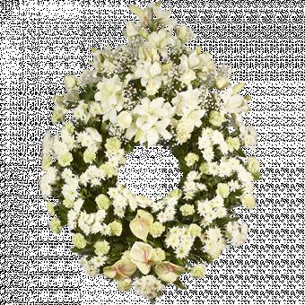 Corona Blanca XXL