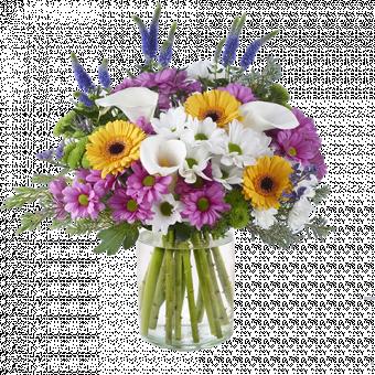 Glühwürmchen: Chrysanthemen und Calla