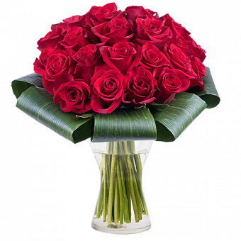Amour Addictif : 25 Roses Rouges