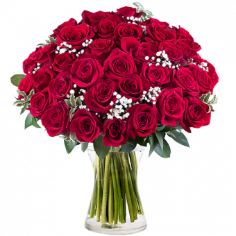 PS. I Love You : 35 Roses Rouges