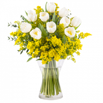 Sunday Morning: Tulipanes Blancos y Solidago