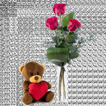 Premier Amour : Roses et Peluche