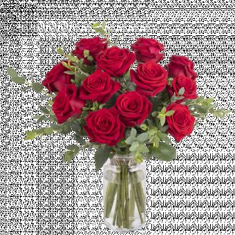 Romance: 12 rosas rojas