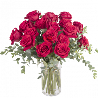 True Love: 20 Red Roses