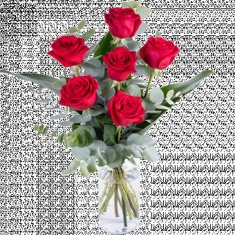 Dillo con le Rose: 6 Rose Rosse