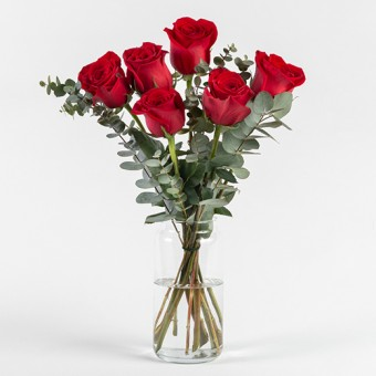 Special Occasion: 6 red roses