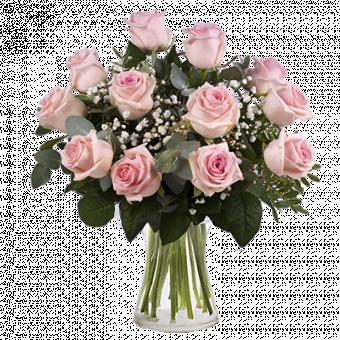 Secrets Roses : 12 Roses Roses