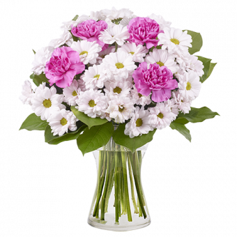 Childhood Memory: Chrysanthemums and Carnations