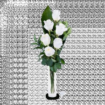 Bright Lights: 6 White Roses