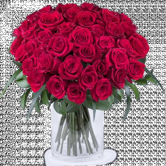 50 оттенков красного: 50 красных роз