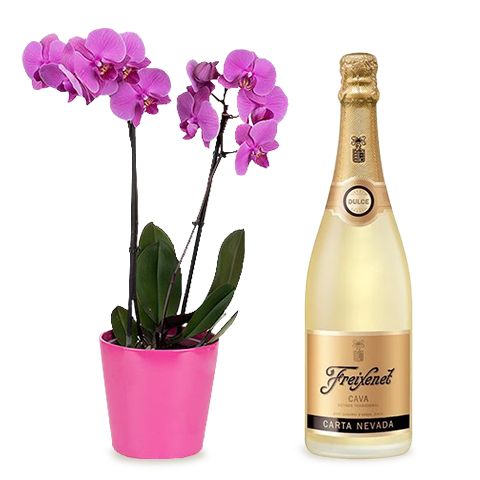 Sparkling Celebration: Orchid and Cava