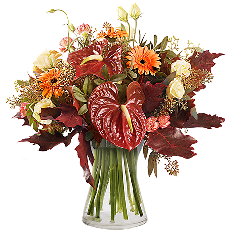 Forest Walk: Gerberas and Carnations