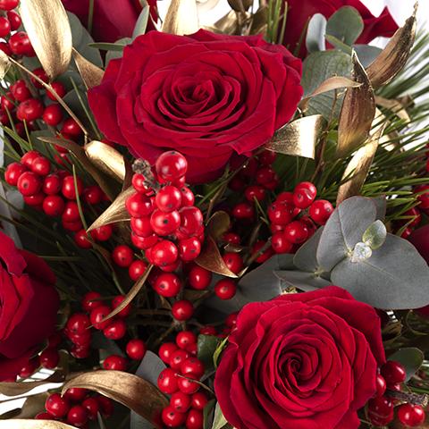 Resplandor: Rosas y Ilex
