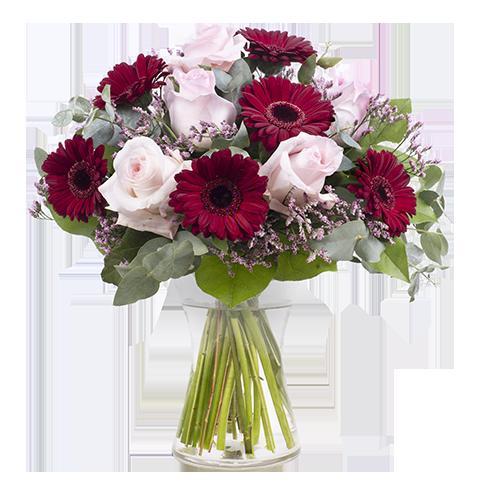 Amor platónico: Rosas y Gerberas