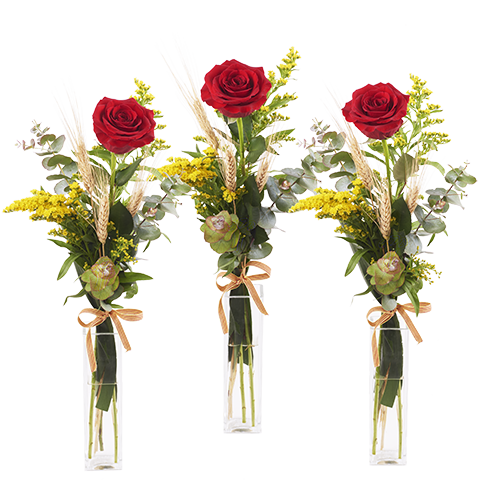 Rosas Enamoradas