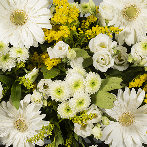 Couronne de gerberas Blanche Medium