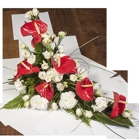 Rote Anordnung Anthurium