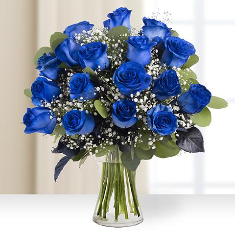 Mirando al infinito: 17 rosas azules