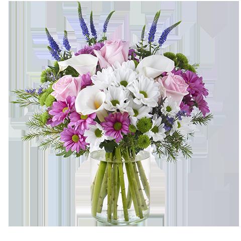 Helado: Crisantemos y Rosas