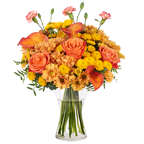 Explosion Orange : Roses et Callas