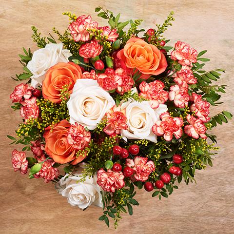 Rosenblüte : Rosen und Nelken