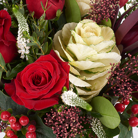 Alegría: rosas rojas y brassicas