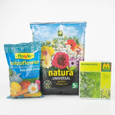 Forever Green: Plant Care Kit