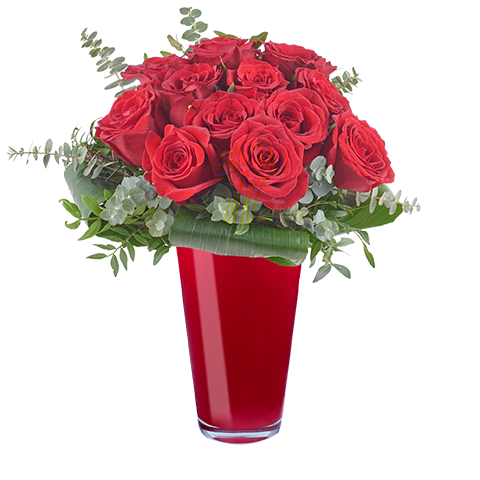 Essence de l'Amour : 12 Roses Rouges