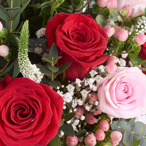 Märchen: Rote und Rosa Rosen