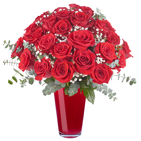 Lavish Love: 24 Red Roses
