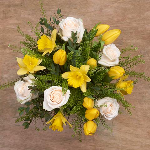 Réconfort Familial : Tulipes et Jonquilles Jaunes
