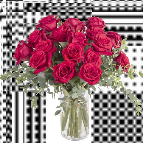 Wahre Liebe: 20 Rote Rosen