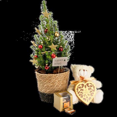 Festive Wish Set