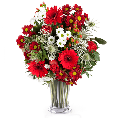 Fresa: Rosas y Flores Silvestres