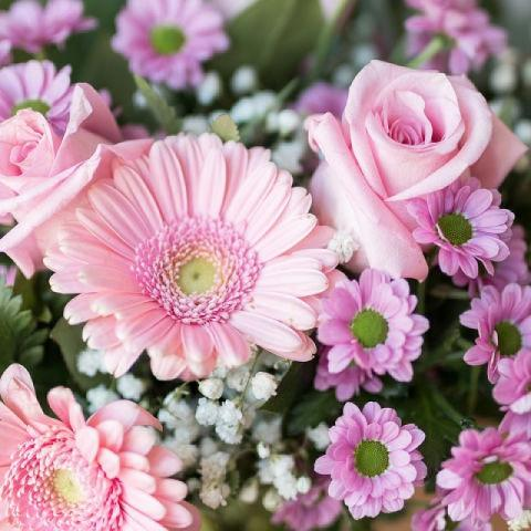 Soft&Sweet: Roses and Gerberas