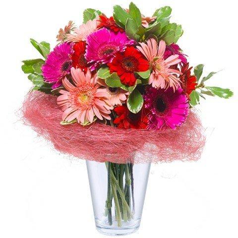 Maravilla Floral: Gerberas
